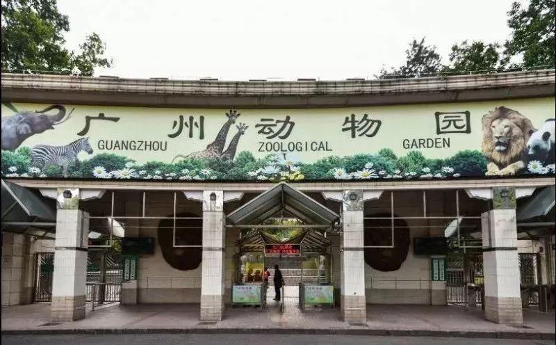 广州动物园有寄存行李的地方吗?